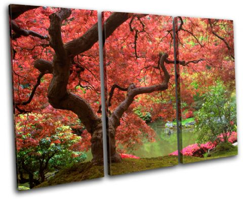 Cherry Blossom Tree Landscapes - 13-1809(00B)-TR32-LO
